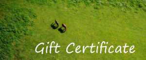 Gift Certificate No. 2 – Free Horse Edition