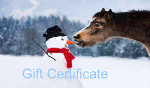 Gift Certificate No. 4 – Snowman Edition